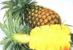 มฟล.ปิ๊งไอเดียผลิตบีบี-มาร์กหน้าใสจากสับปะรด ระบุช่วยยับยั้งฝ้า