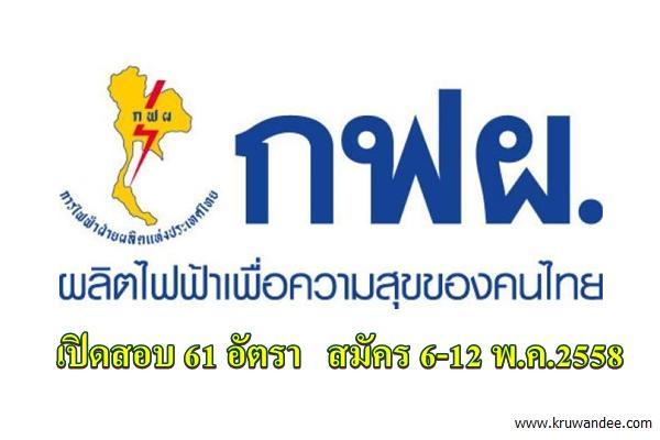 การไฟฟ้าฝ่ายผลิตแห่งประเทศไทย (กฟผ.) เปิดรับบุคคลภายนอกเป็นพนักงาน 61 อัตรา สมัคร 6-12 พ.ค.2558