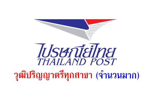 ด่วนเปิดรับจำนวนมาก! ไปรษณีย์ไทย รับสมัครงาน วุฒิปริญญาตรีทุกสาขา สมัครตั้งแต่บัดนี้ - 4 กันยายน 2558
