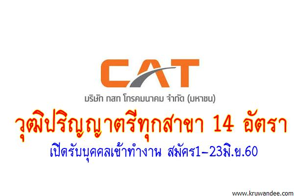วุฒิปริญญาตรีทุกสาขา 14 อัตรา CAT กสท โทรคมนาคม เปิดรับบุคคลเข้าทำงาน สมัคร1-23มิ.ย.60