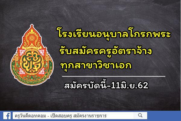 โรงเรียนอนุบาลโกรกพระ(ประชาชนูทิศ) รับสมัครครูอัตราจ้าง ทุกสาขาวิชาเอก สมัครบัดนี้-11มิ.ย.62