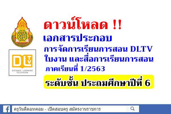 ดาวน์โหลดใบงาน สื่อการสอน DLTV ชั้นประถมศึกษาปีที่ 6 ภาคเรียนที่ 1/2563