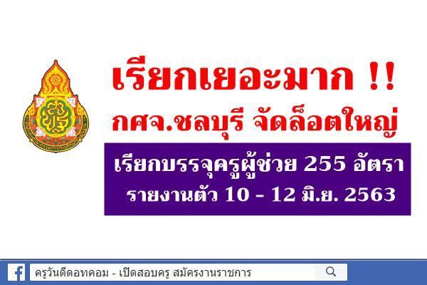 เรียกเยอะมาก!!! กศจ.ชลบุรี เรียกบรรจุครูผู้ช่วย 255 อัตรา รายงานตัว 10 - 12 มิ.ย. 2563