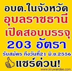 อบต.ในจังหวัดอุบลราชธานี เปิดสอบบรรจุรับราชการ จำนวน 203 อัตรา - รับสมัคร 3-21 มิถุนายน 2556