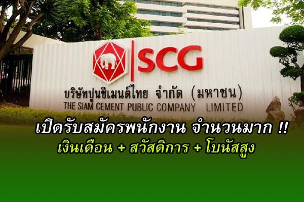 เงินเดือนดี โบนัสสูง SCG เปิดรับสมัครพนักงานจำนวนหลายอัตรา