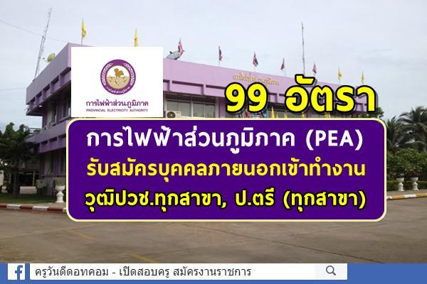 การไฟฟ้าส่วนภูมิภาค (PEA) รับสมัครบุคคลภายนอกเข้าทำงาน 99 อัตรา